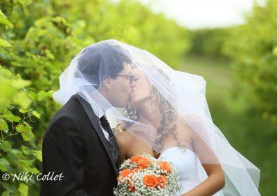 Un bacio sotto il velo nuziale servizio fotografico